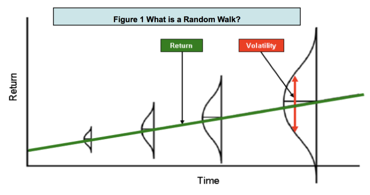Figure 1 What is a Random Walk